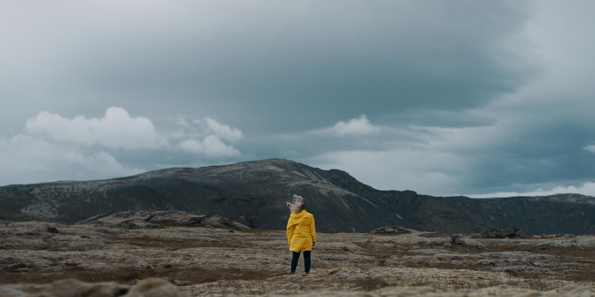 Iceland runs on Trust