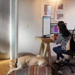 een hond zit op een stoel in een kamer